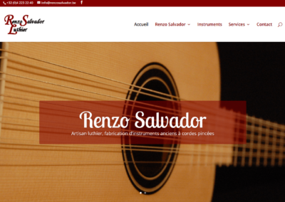 Site Internet Renzo Salvador